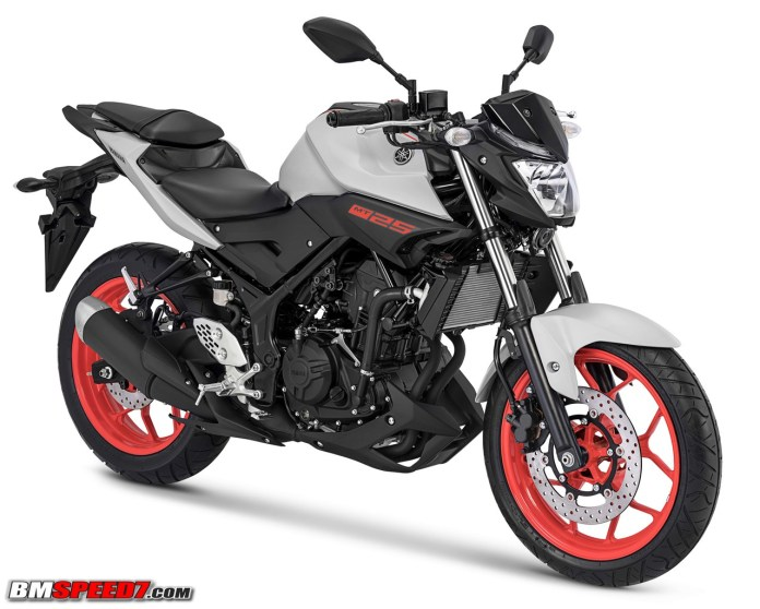 Yamaha MT-25 2018 Grey