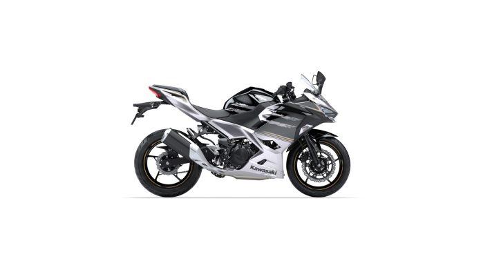 2019 Kawasaki Ninja 250