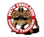 New England Double Terriers