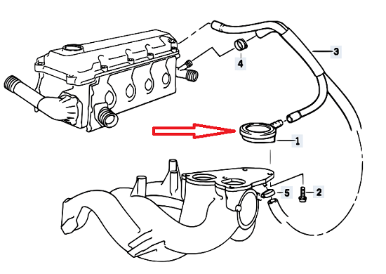 Bmw E36 Fuel Tank, Bmw, Free Engine Image For User Manual