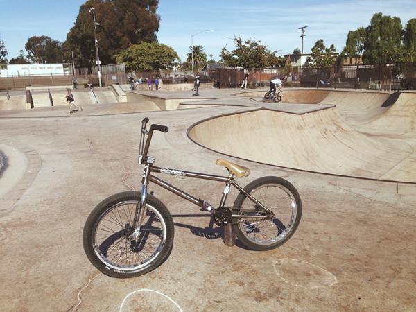 Tom Perry Bike Check