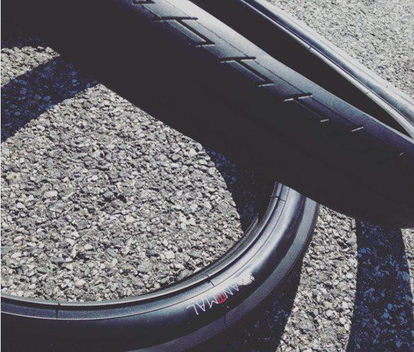 animal-bikes-bmx-tire