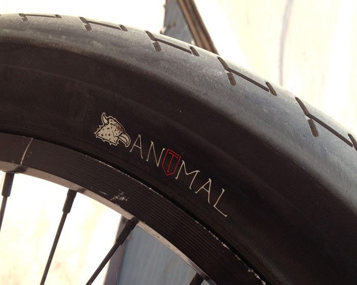 animal-bikes-terrible-one-bmx-tire
