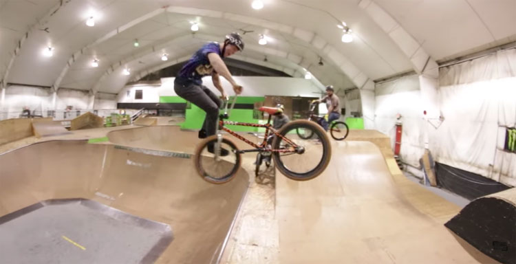 Teaching Big Boy How To Tailwhip