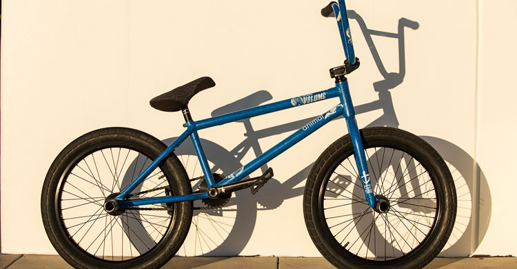 Animal Bikes – Demarcus Paul Bike Check