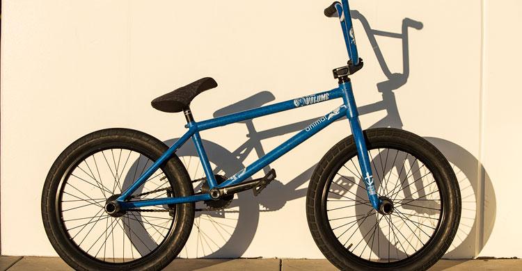 Animal Bikes – Demarcus Paul Bike Check