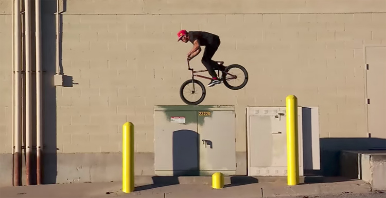 "Vans BMX – ""Illustrated"" Dakota Roche Section"