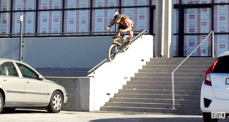 "BSD – Reed Stark ""Safari"" Video"