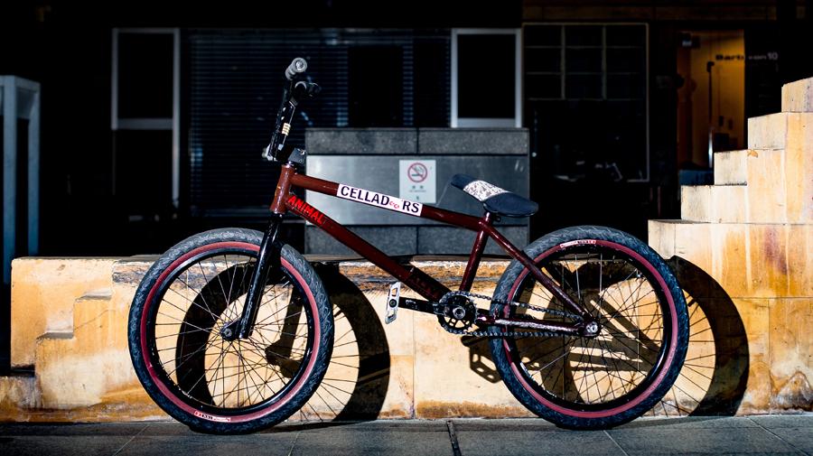 Daisuke Shiraishi Bike Check Animal Bikes