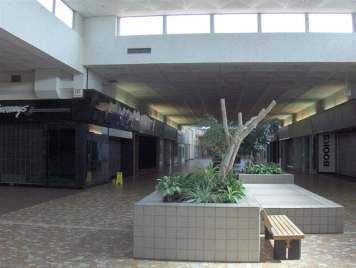 Кловерлиф молл (Cloverleaf Mall) Честерфилд Вирджиния (20)