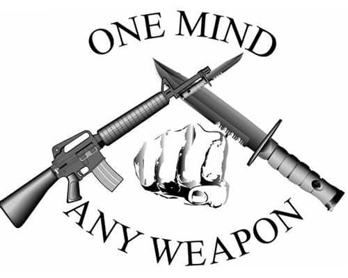 Эмблема и слоган системы самообороны MCMAP.