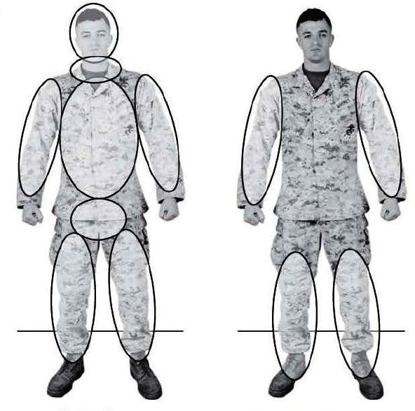 Рис. 2-1. Зоны поражения и ударные части тела.