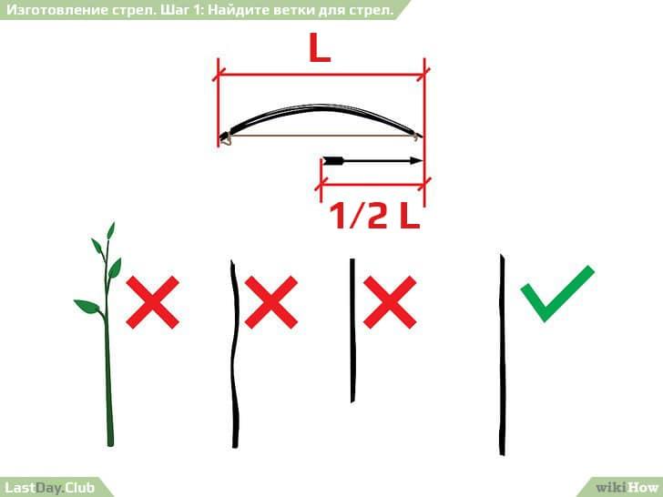 9 - Найдите ветки для стрел - Как сделать стрелы своими руками - Руководство по выживанию