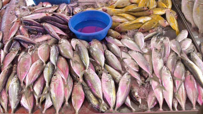 Vis, wekelijkse markt, Costa Blanca