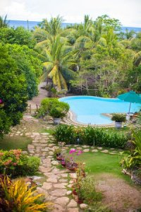 Tropical Pool Designs: Creating a Paradise in Your Backyard