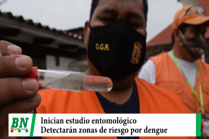 Inician estudio entomológico para detectar las zonas y tipo de riesgo por el dengue