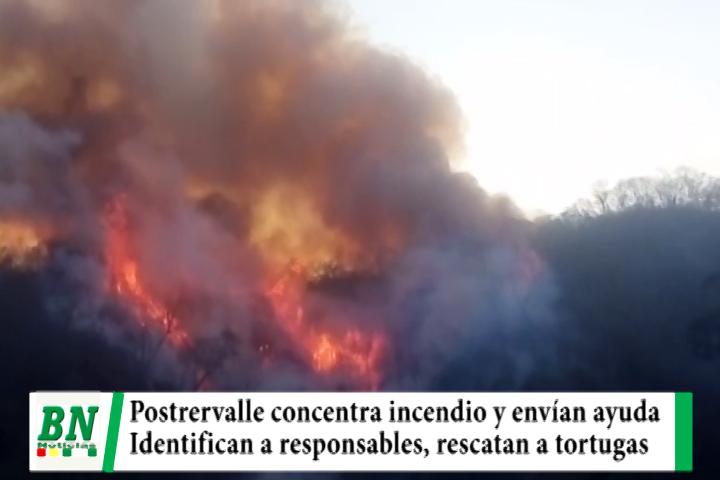 Postrervalle concentra incendios y envían ayuda, cárcel a chaqueadores, tortugas rescatadas