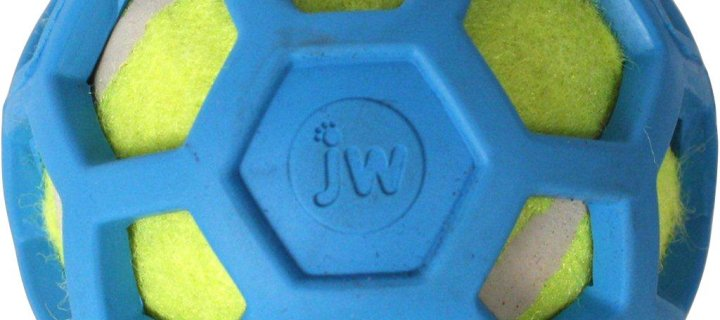 New Product: JW Pet – ProTen Hol-ee Roller Ball