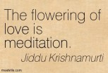 Quotation_Krishnamurti (4)
