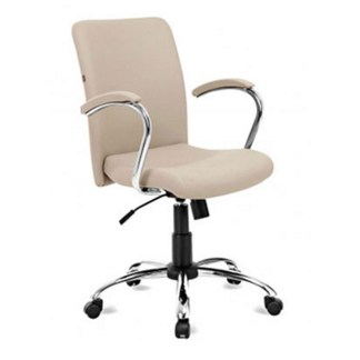 Cadeira Diretor Giratória com Braço PIRIQUI