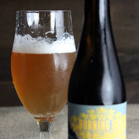 Burning Sky Saison a la Provision in the glass.
