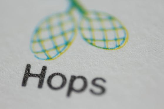 Hop Shortage Already Biting
