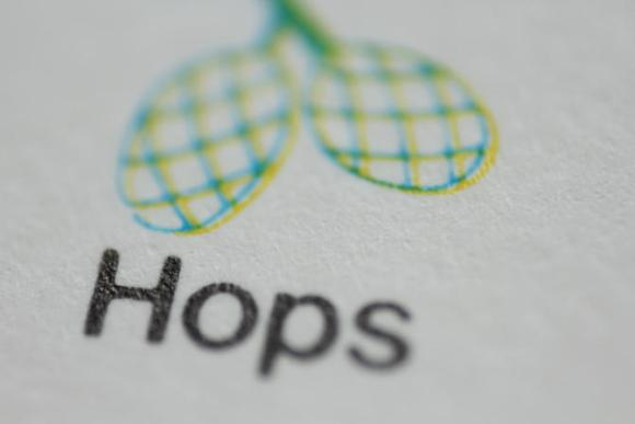 Macro image: 'Hops' with illustration of hop cones, 1970s.
