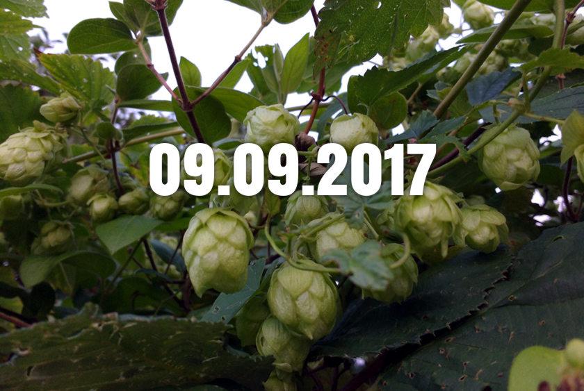 News, Nuggets & Longreads 9 September 2017: Pasteur, Porter, Pubcos
