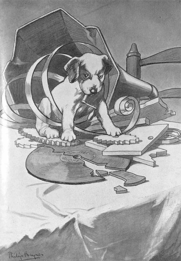 A dog in a smashed gramophone.