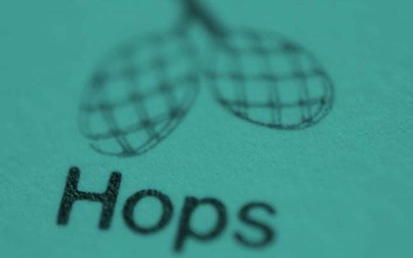Vintage illustration of hops.