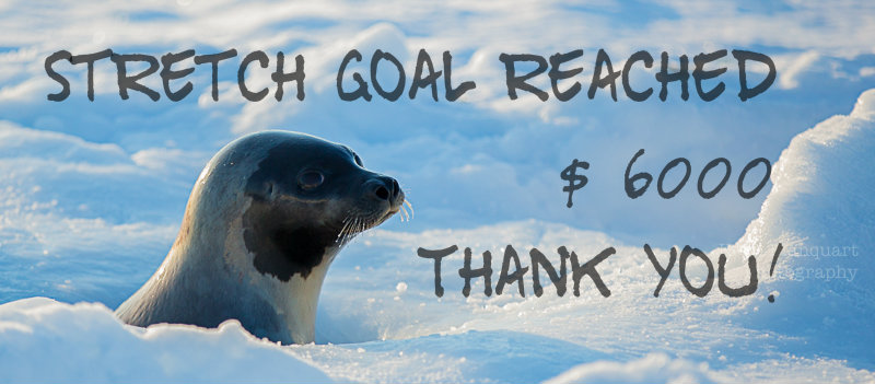 Antarctica crowdfunding, first extra reached!