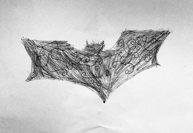 Hollys Batsignal