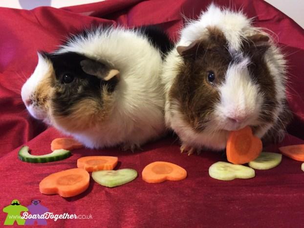 Valentines Piggies
