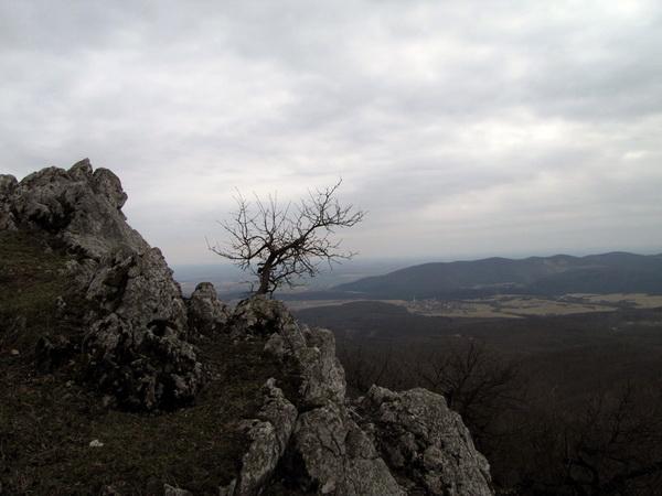 Na vrchole. V pozadí obec Lošonec a Orešanské vŕšky.