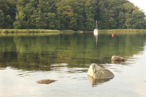 bay genner fjord denmark rocks water trees tranquil denmark