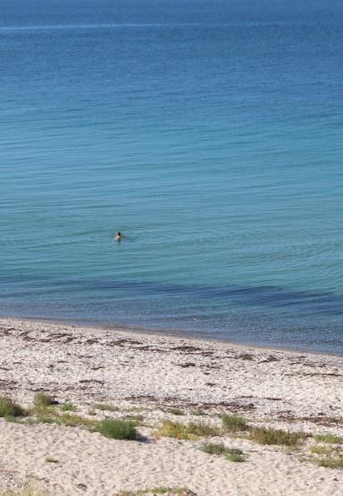 sejero beach water swimming denmark island boatingthebaltic.com