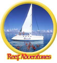 catamaran reef adventure