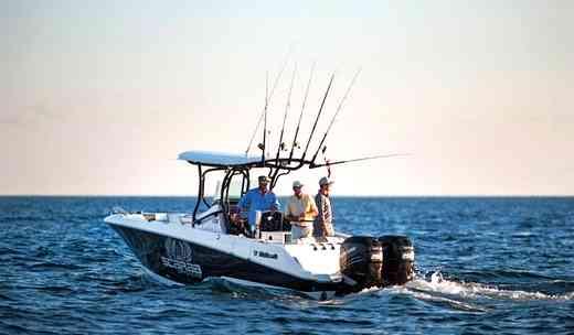 Wellcraft 262 Fisherman Price, wellcraft 262 fisherman for sale, wellcraft 262 fisherman review, wellcraft 262 fisherman boat for sale, 2017 wellcraft 262 fisherman,