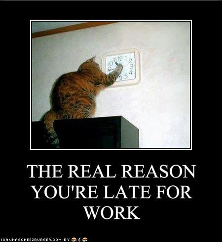 The Real Reason You're Late For Work ;)  Bobbi's Blog