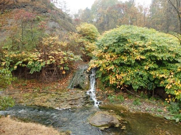 Otsquago Creek Tributary falls on, Herkimer County