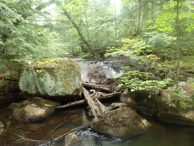 Twitchell Creek Falls and Cascades #2, Herkimer County, New York State