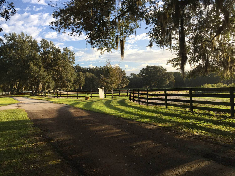 Facility Bobbin Hollow Equestrian Center In Ocala Florida