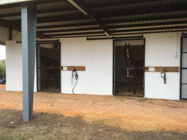 show-barn-stalls