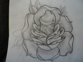 Penis rose