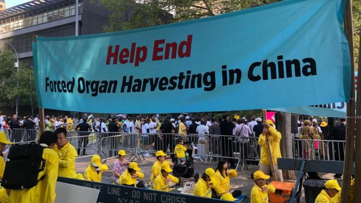 China Organ Harvesting