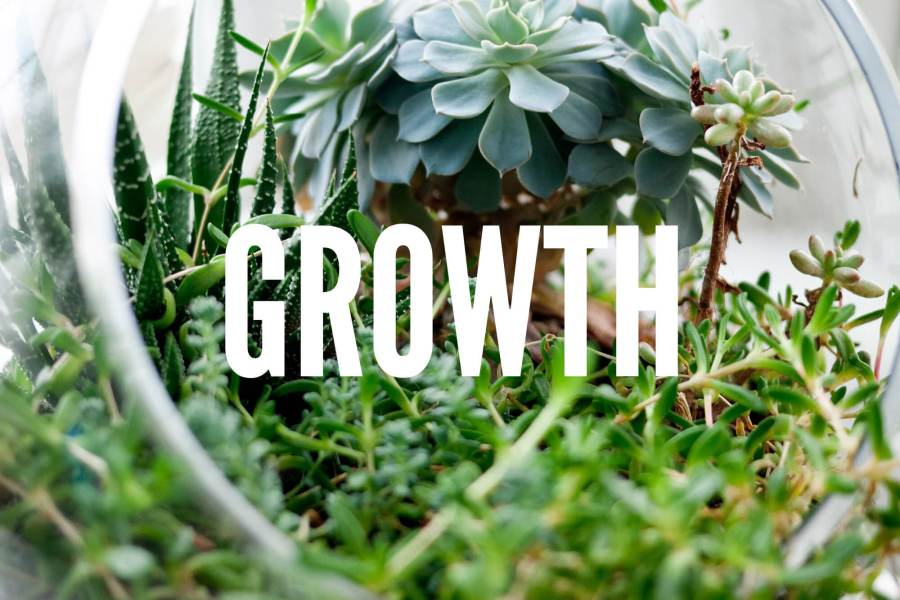 Growth | BobbyShirley.com