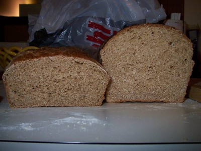 Poor whole wheat bread