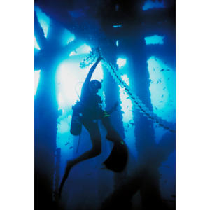 Hillary Hauser with sunlight through salp chain diving below Platform Holly