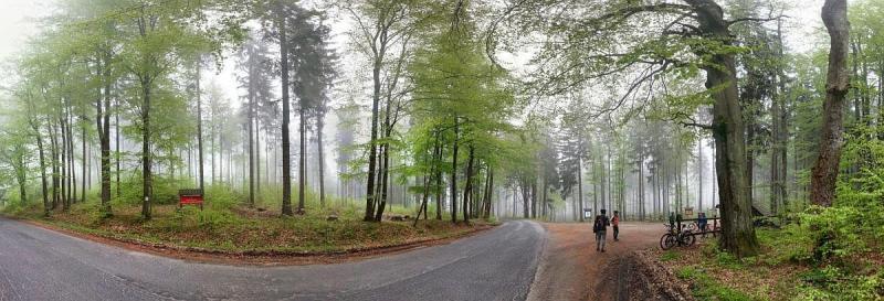 Borowkowa Gora - Panorama