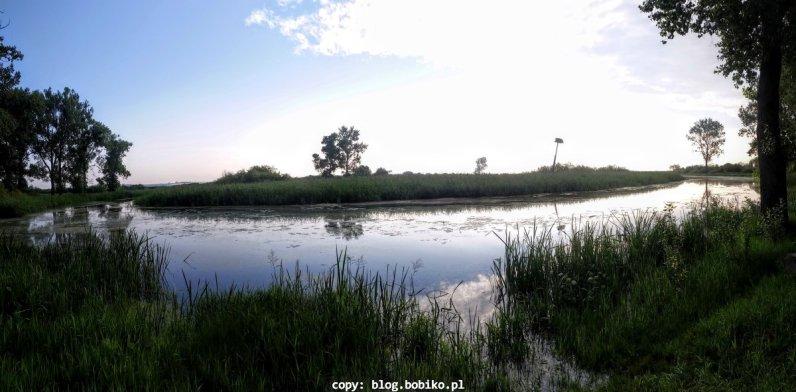 Notecko - cisza i spokoj - idealne miejsce na przerwe w podrozy